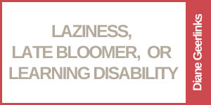 Laziness, LateBloomer, or Learning Disability?