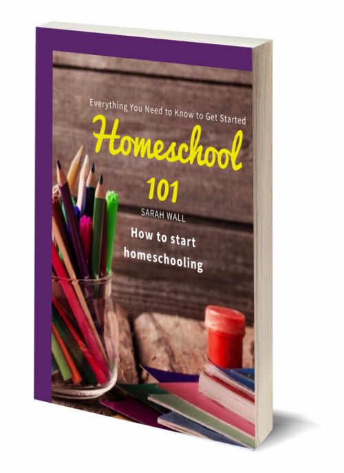 Homeschool Ebook 3D cover