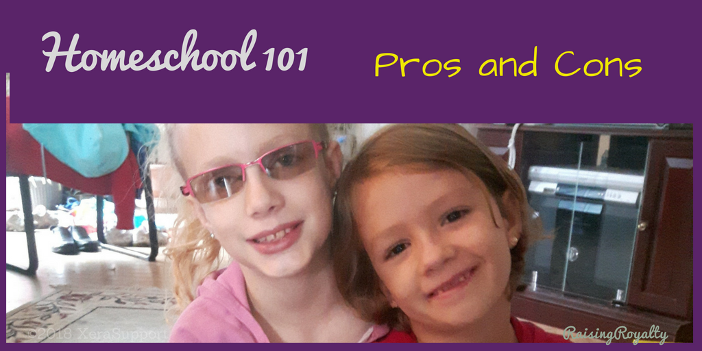 homeschool 101pros and cons title
